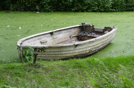 An old green boat sitting in algae covered water Banco de Imagens