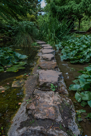 Stepping stones over a small stream with lily pads to either side 스톡 콘텐츠