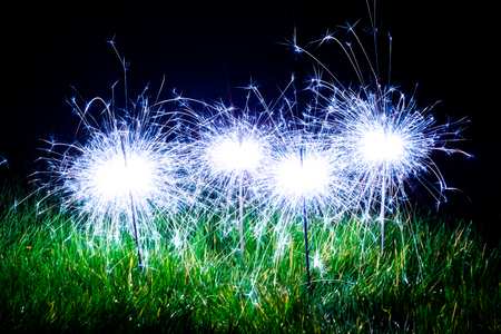 Four blue sparklers standing in the green grass with streams of light exploding from their centres