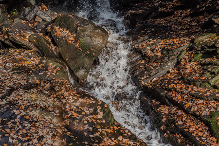 A small stream of water running through rocks covered in autumn leaves Banco de Imagens