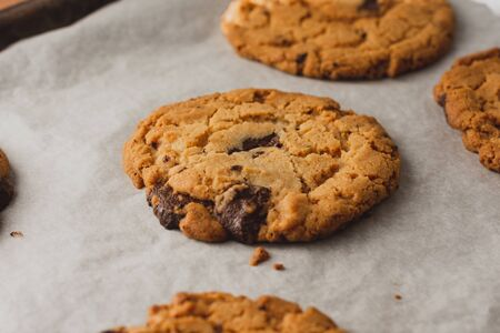 Freshly baked chocolate chip cookies on baking parchment Banco de Imagens