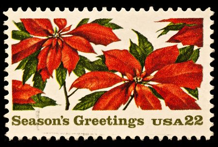 Poinsettia plants and season greetings Christmas postal stamp.