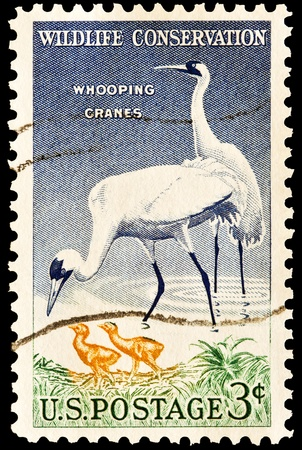 Wildlife conservation, Whooping Cranes and babies  Issued in 1957