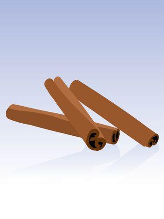 cinnamon sticks on gradient background     photo