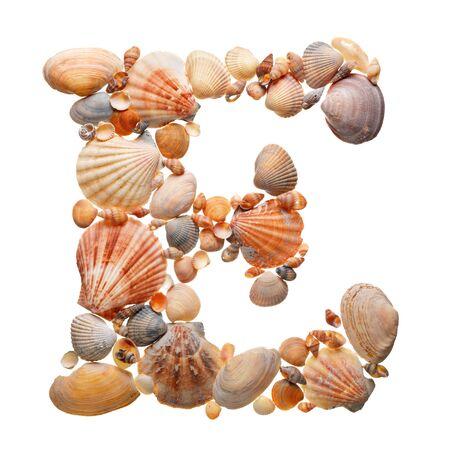 summer alphabet made of seashells during travel