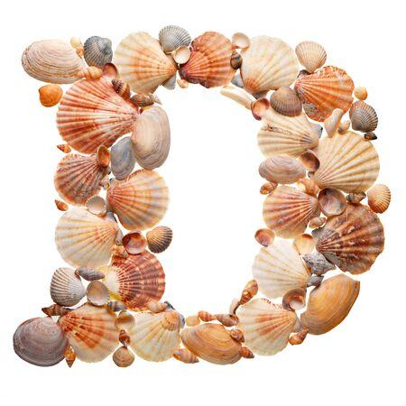 seashells: summer alphabet made of seashells during travel