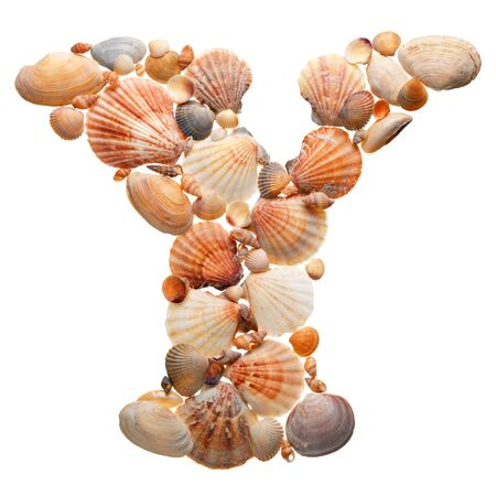 summer alphabet made of sea shells during travel photo