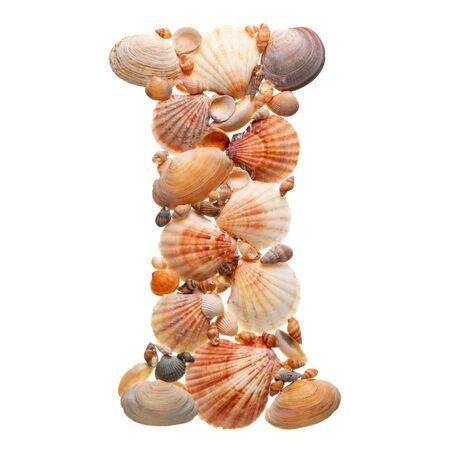 summer alphabet made of sea shells during travel