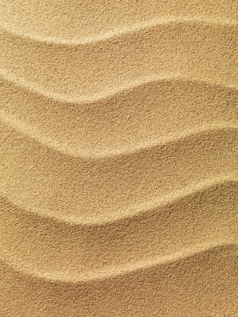 beach sand background photo