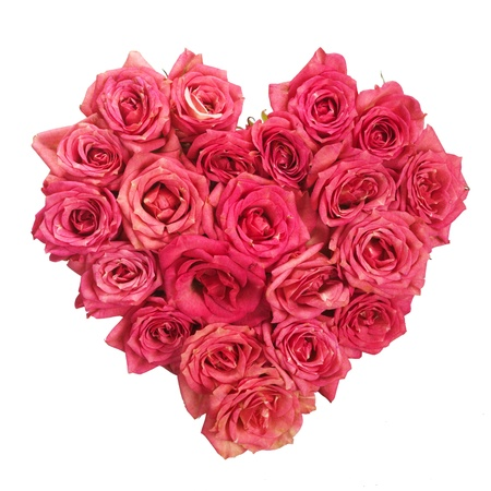 Rose Flowers Heart Over White  Valentine  Love photo