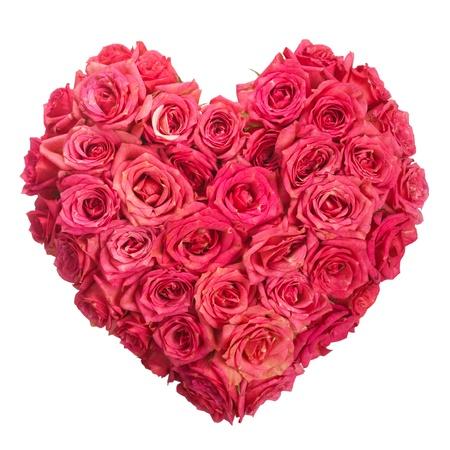 saint valentin coeur: Fleurs Rose Coeur Sur Fond Blanc Valentine Love