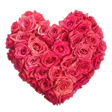 bunch of hearts: Rose Flowers Heart Over White  Valentine  Love