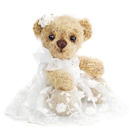 Teddy bear bride photo