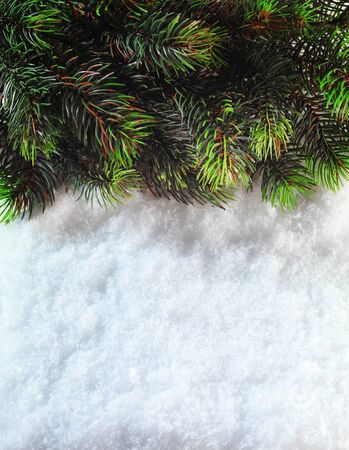 boarder: Winter Christmas background. Christmas boarder with fir tree branch with cones on the snow. Close up with copy space. Winter holidays concept. Stock Photo