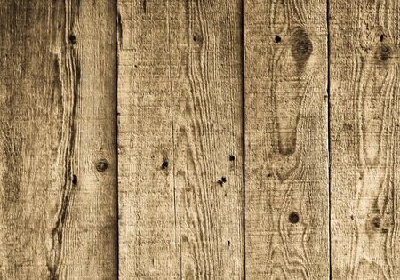 wood texture Stock Photo - 8325792
