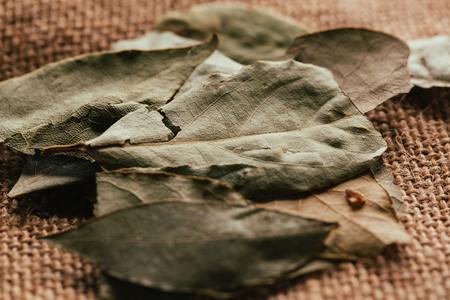 few laurel leaves on light fabric sacking.