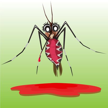 bloodsucker: common house mosquito