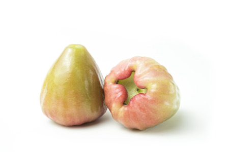Rose apples isolated fresh on white background. The fruits are sweet and red or green.