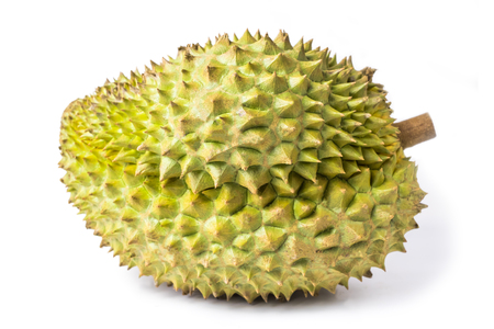 Durian monthong fruit fresh isolated on white background and clipping path. The name of science : Durio zibethenus Linn.