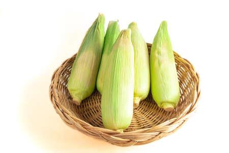Corn in a wooden basket. isolated on white background 版權商用圖片