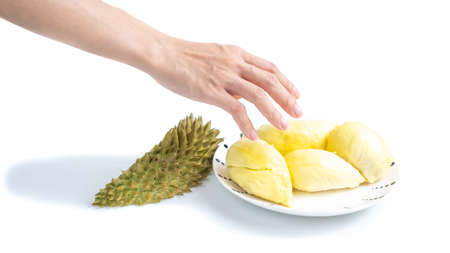 The hand is picking the durian on a plate. on white background 版權商用圖片