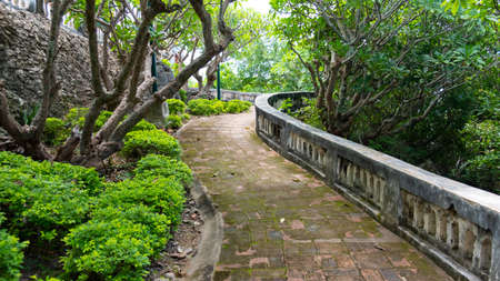 A pathway in a forest temple That is shady Full of trees 版權商用圖片