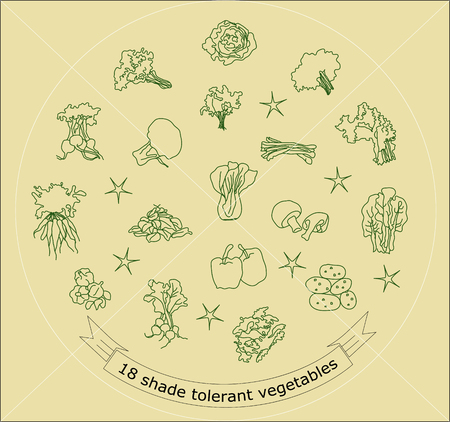 Vegetable line icons with outline style design elements Stock Vector - 78307533