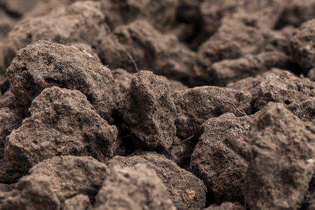 Closeup Soil texture brown background. Soil is a mixture of organic matter, minerals, gases, liquids, and organisms. it is a medium for plant growth, for use organic gardening, agriculture. Stok Fotoğraf