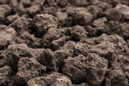 Closeup Soil texture brown background. Soil is a mixture of organic matter, minerals, gases, liquids, and organisms. it is a medium for plant growth, for use organic gardening, agriculture. Stock Photo