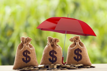 Risk protecting, wealth management and long term money investment, financial concept: Arrange coins and US dollar bag Under the red umbrella. Depicts asset security for sustainable growth. 版權商用圖片