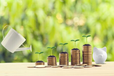 Saving money for future growth concept: Water being poured on green sprout on rows of increasing coins on wood table in the natural green background. Banking and finance, Depicts asset security for sustainable growth.