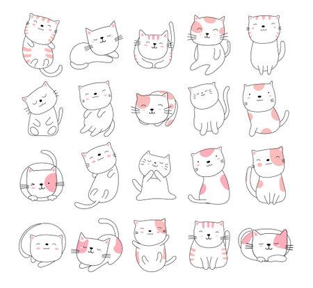 Hand drawn style white cute cat animal cartoon