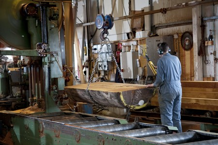 A man working the main saw in a sawmill photo