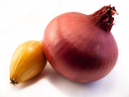 Red Onion shot on a white background photo