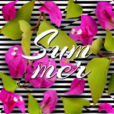 Summer background with purple tropical flowers, fallen petals and leaves on a black and white striped background. Bougainvillea. Realistic plants. Vector illustration EPS10