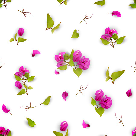 Summer or spring seamless pattern with purple tropical flowers, fallen petals and leaves on a white background. Realistic plants. Bougainvillea. Vector illustration EPS 10