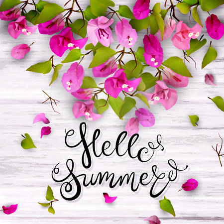 Hello summer. Lettering. 3d. Tropical flowers bougainvillea in a frame. Isolated illustration on white wood. Illustration
