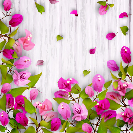 Beautiful floral background with tropical flowers bougainvillea on white wood. Place for the text. Vector illustration of EPS10