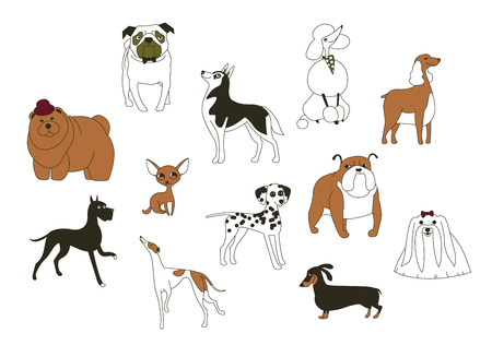 Dog breeds. Animal symbol of 2018 on the eastern calendar. Icons of cute doggys isolated on white background. Set of vector illustrations. Stock Vector - 82252067