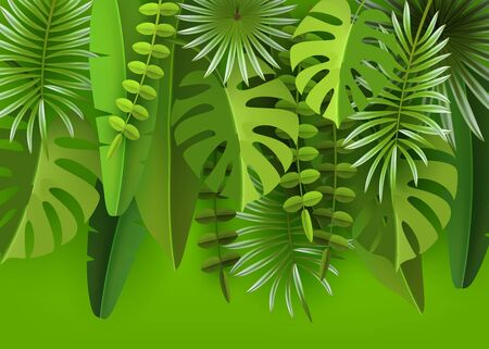 Tropical leaves and plants. Green abstract background with tropical foliage.