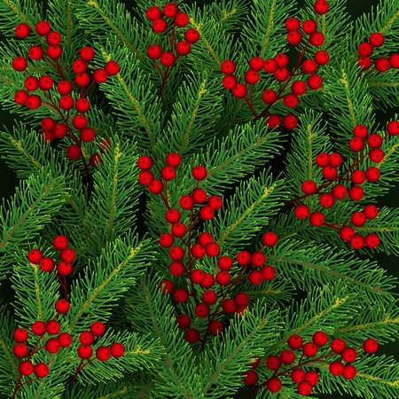 Christmas background with branches of Christmas tree and holly berries Realistic festive backdrop Vector illustration Illustration