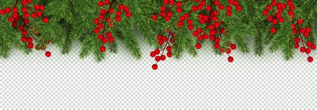 Christmas and New Year border of realistic branches of Christmas tree and holly berries Element for festive design isolated on transparent background Vector illustration Reklamní fotografie - 103388425