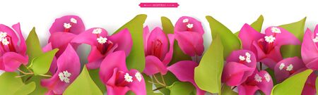 Vector illustration of Floral tropical border, realistic pink flowers and green leaves of bougainvillea, seamless vector pattern