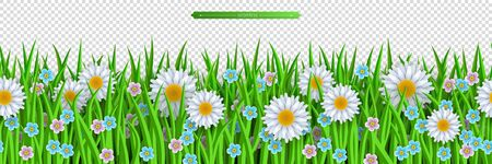 Decoration element of summer spring and Easter design isolated on transparent