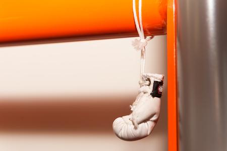 Hanging boxing gloves Toy souvenir