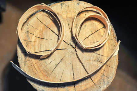 Tree stump with growth rings And a smiley of wood chips