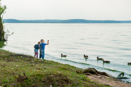 greengrass: Two adorable children feeding ducks by a river at summer Stock Photo