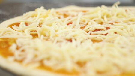 A man or woman is engaged in home business preparing a delicious pizza. Cooking pizza. 版權商用圖片