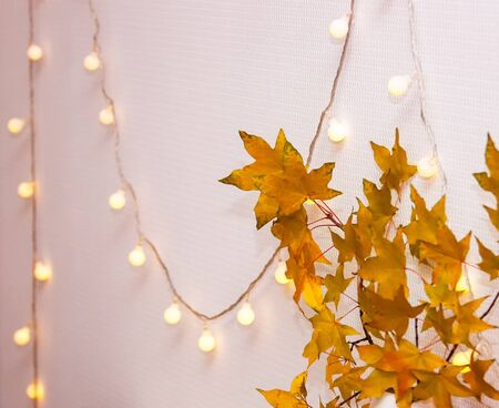 Home concept with modern interior, white room, blank wall. Clean wall, light garland, yellow maple leasves. Cozy minimalist abstract autumn interior for poster, banner. Space for text, selective focus Zdjęcie Seryjne