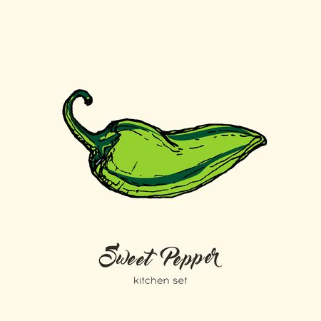 Green pepper vector isolate. Hand drawn illustration sweet bulgarian bell paprika capsicum chili hot pepper. Vettoriali